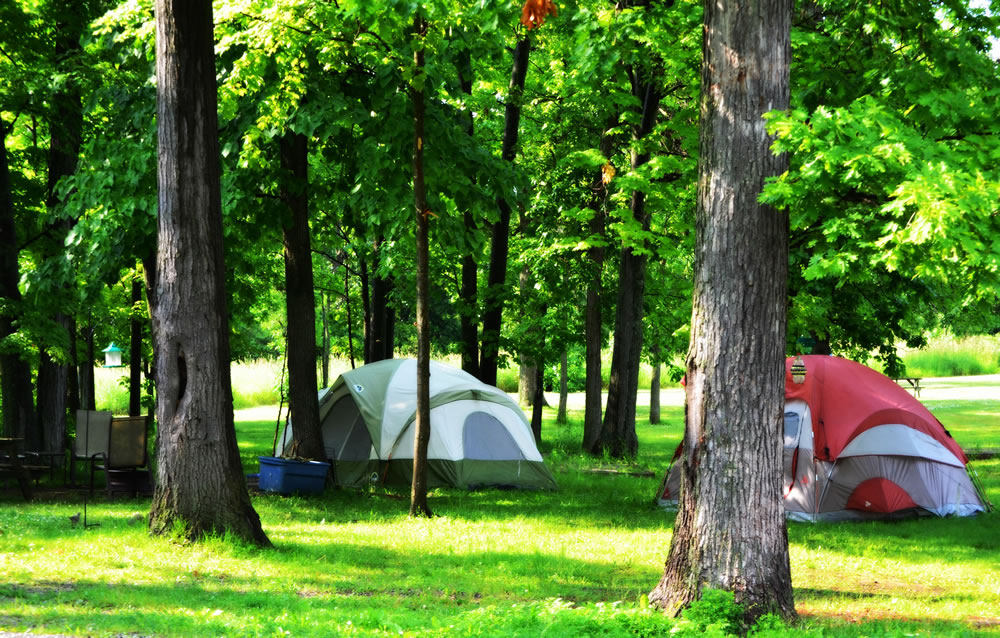 Accomodations - Camping/Taux de jour
